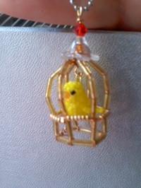 20120925_birdcage
