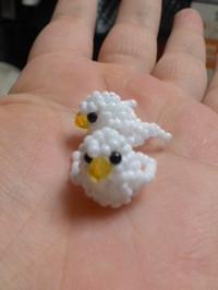 20130107_bird1