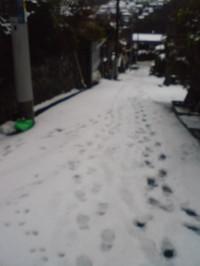 20140208_snow