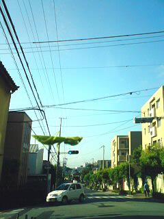 20100904_kamakiri