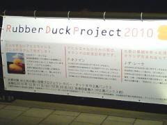 20101215_duck2