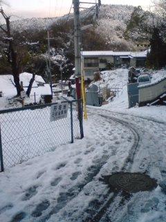 20110215_snow2