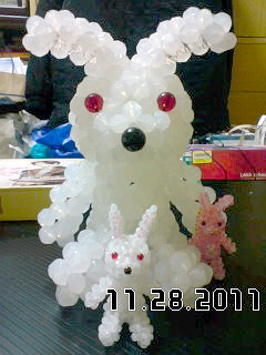 20111127_rabbit3